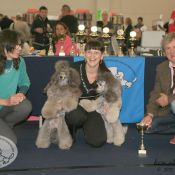 Winner Couple Class - Kennel Silberloewe.jpg
